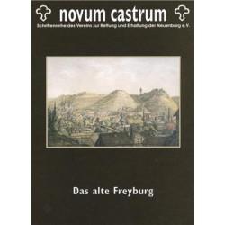 Das alte Freyburg
